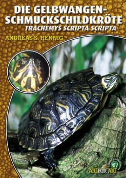 Die Gelbwangenschmuckschildkröte, Tracheyms scripta scripta