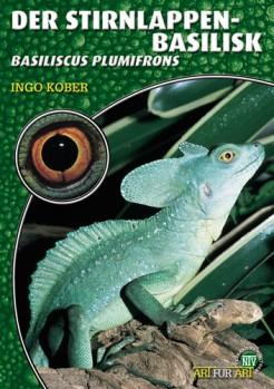 Der Stirnlappenbasilisk Basiliscus plumifrons
