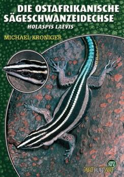 Die Ostafrikanische Sägeschwanzeidechse, Holaspis laevis