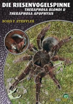 Riesenvogelspinnen: Theraphosa blondi & T. apophysis