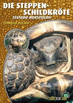 Steppenschildkröte Testudo horsfieldii