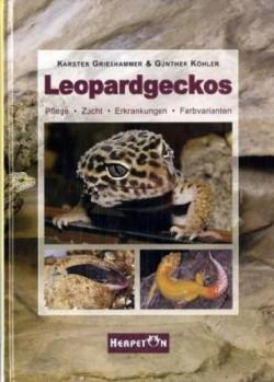 Leopardgeckos: Pflege, Zucht, Erkrankungen, Farbvarianten