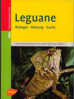 Leguane   Biologie: Haltung: Zucht