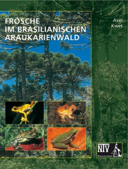 Frösche im brasilianischen Araukarienwald