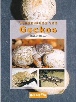 Vermehrung von Geckos