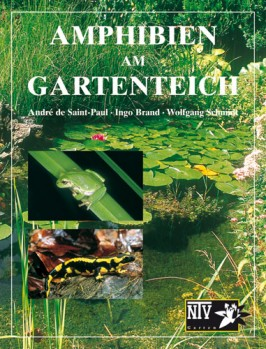 Amphibien am Gartenteich