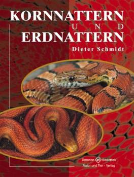 Kornnattern und Erdnattern - Elaphe guttata und Elaphe obsoleta