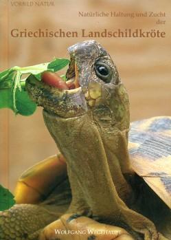 Die natürliche Haltung und Zucht der Griechischen Landschildkröten