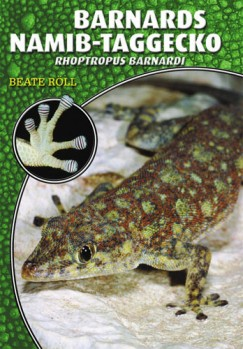 Barnards Namib-Taggecko - Rhoptropus barnardi