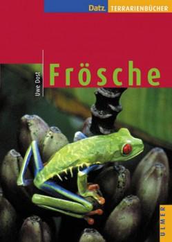 Frösche: exotisch: farbfroh: aktiv