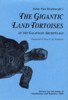 The Gigantic Land Tortoises of the Galapagos Archipelago