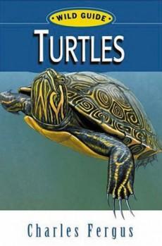 Wilde Guide Turtles