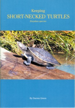 Keeping Short-necked Turtles Emydura Species