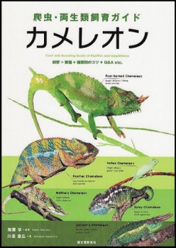Chameleons - Care, Breeding and Species