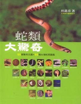 Bewundernswerte Schlangen