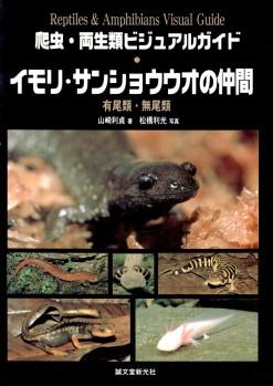 Newts & Salamanders