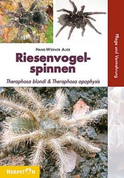 Riesenvogelspinnen Theraphosa blondi & Theraphosa apophysis