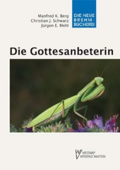 Die Gottesanbeterin Mantis religiosa