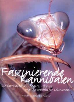 Faszinierende Kannibalen - Die Gottesanbeterin und ihr natürlicher Lebensraum