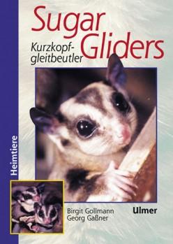 Sugar Gliders - Kurzkopfgleitbeutler