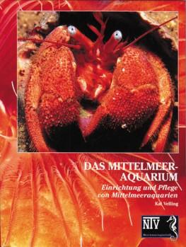 Das Mittelmeeraquarium - Einrichtung und Pflege
