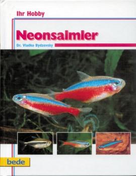 Neonsalmer