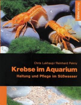 Krebse im Aquarium - Haltung und Pflege im Süßwasser
