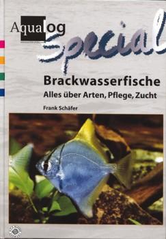 Brackwasserfische - Alles über Arten, Pflege, Zucht