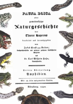 Fauna Boica oder gemeinnützige Naturgeschichte der Thiere Bayerns Dritte