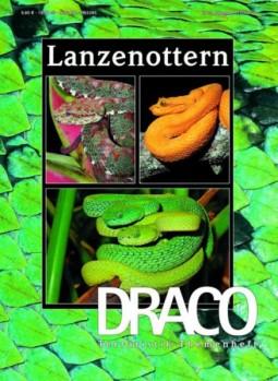 Heft 33 Lanzenottern Grubenottern Mittel- und Südamerikas