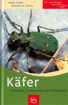 Käfer - Merkmale Vorkommen und Lebensweise