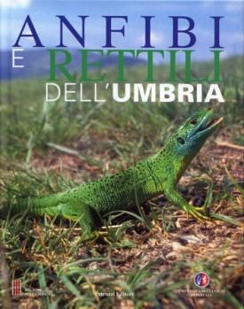 Anfibi e Rettili dell?Umbria
