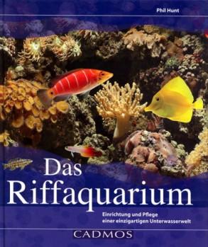 Das Riffaqarium - Einrichtung und Pflege einer einzigartigen Unterwasserwelt