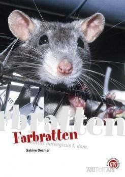 Farbratten - Rattus norvegicus f. dom.