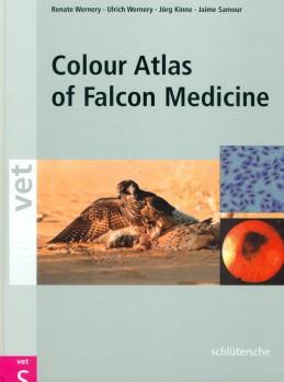 Colour Atlas of Falcon Medicine