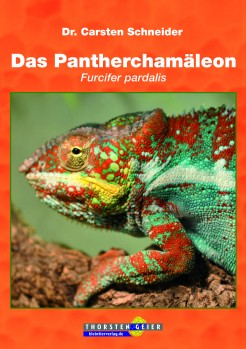 Das Pantherchamäleon