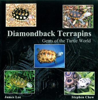 Diamondback Terrapins - Gems of the Turtle World