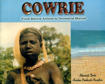 Cowrie - From Marine Animal to Terrestrial Marvel