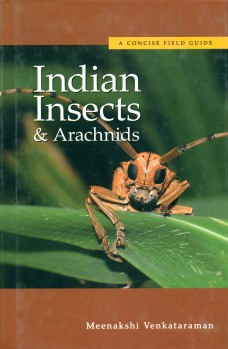 A concise field guide to Indian insects and arachnids