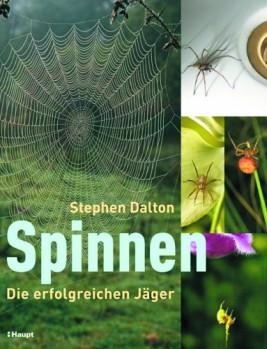 Spinnen - Die erfolgreichen Jäger