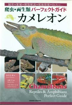 Chameleons - Reptiles & Amphibians Perfect Guide