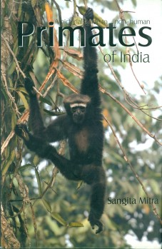 A pictorial guide to non-human Primates of India