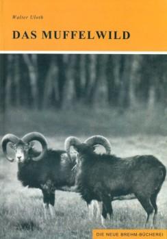 Das Muffelwild (Ovis ammon musimon)