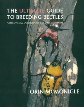 The Ultimate Guide to Breeding Beetles - Coleoptera Laboratory Culture Methods