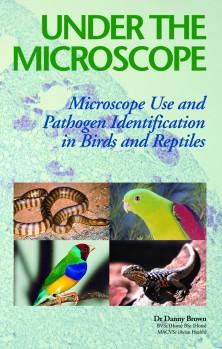 Under the Microscope - Microscope Use and Pathogen Identification