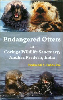 Endangered Otters in Coringa Wildlife Sanctuary, Andhra Pradesh, India