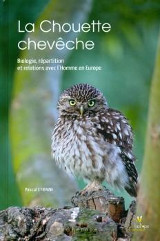 La Chouette chevêche - Biologie, répartition et relations avec l'Homme en Europe