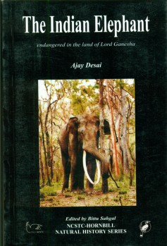 The Indian Elephant - Endangered in the Land of Lord Ganesha