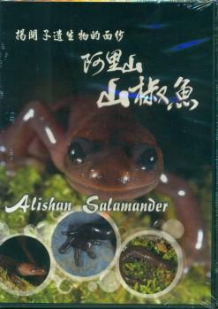 Alishan Salamander