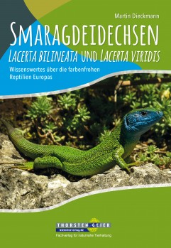 Smaragdeidechsen Lacerta bilineata und Lacerta viridis – Wissenswertes über die farbenfrohen Reptilien Europas